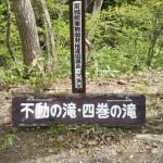 DSC_0962